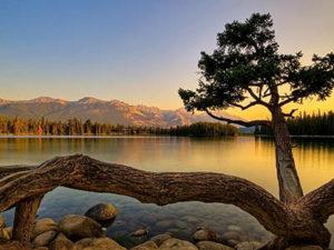 jerry-rubin-retirement-lake