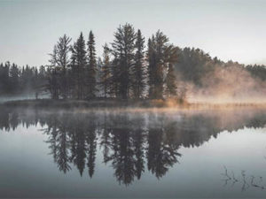 jerry-rubin-retirement-legacy-planning-woods